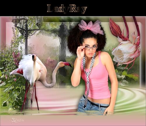 Flamingo raymonde