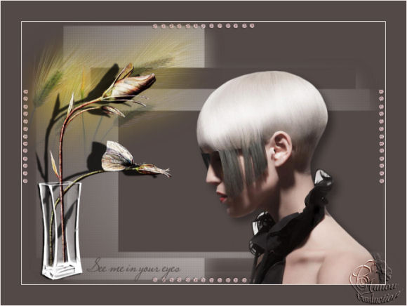 Image4 5
